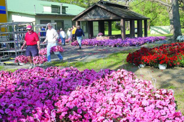 Annual Flower Sale To Aid Genesis House News