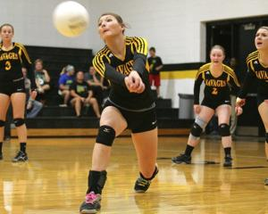 Special stars earn place on All-Courier volleyball squad