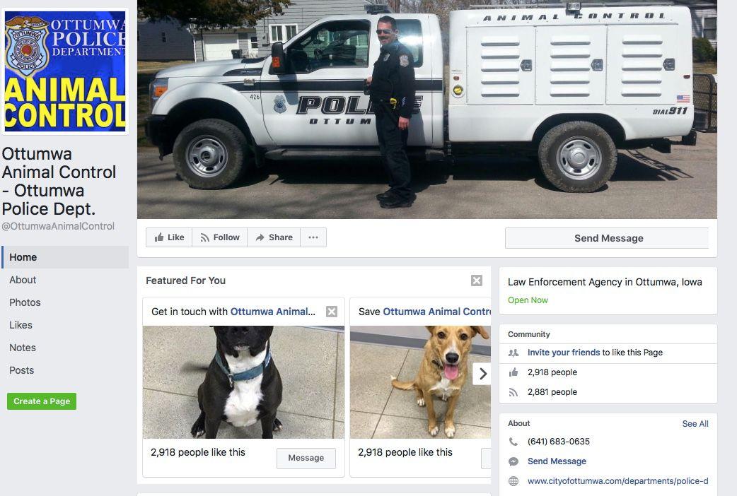 Ottumwa animal control page