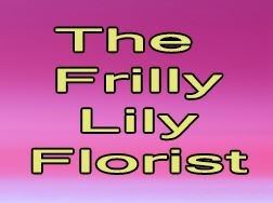 The Frilly Lily Florist