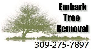 Embark Tree Service