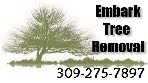 Embark Tree Removal
