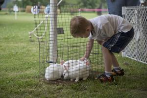 Photos: Conservation Family Day