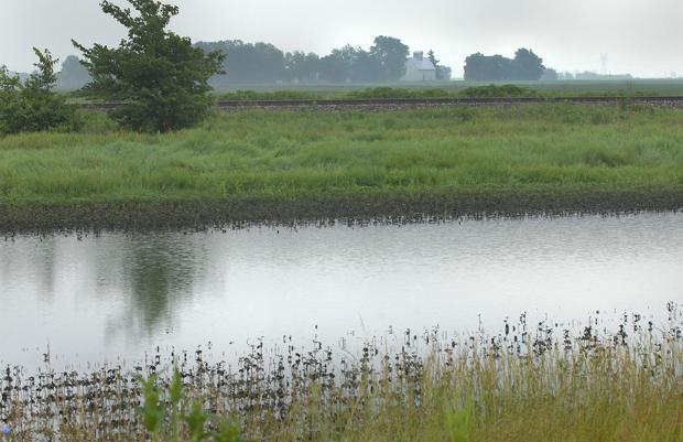 Rain delay: Wet weather has farmers worried