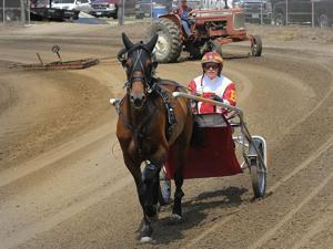 Photos: Harness racing at Logan Fair