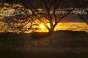 Photos: Central Illinois autumn scenery