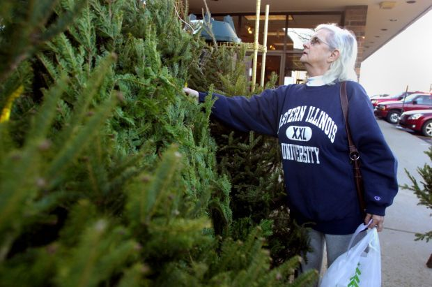 Jeffrey Alans Christmas Trees