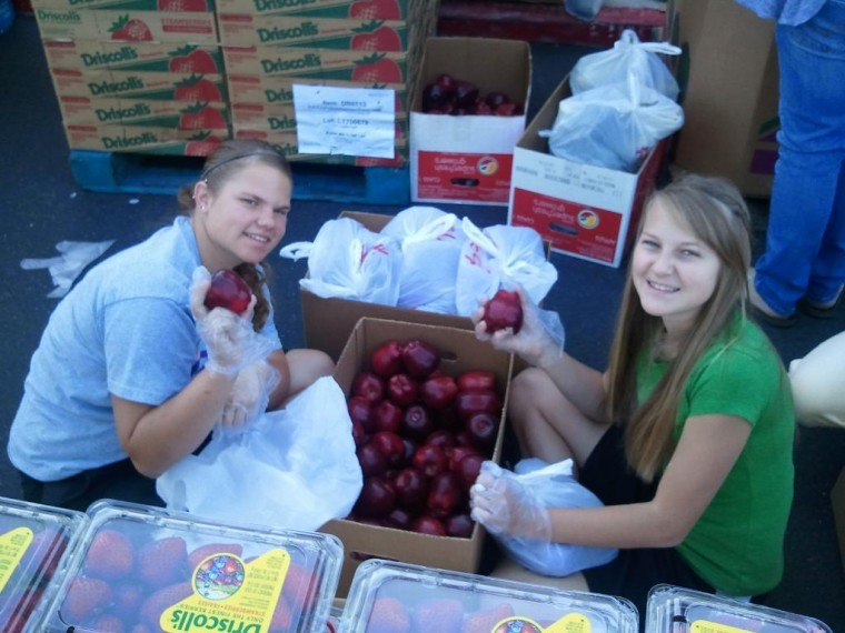 Mobile Pantry 2