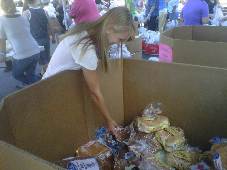 Mobile Pantry 3