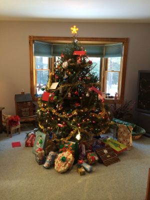 Christmas trees from around the region