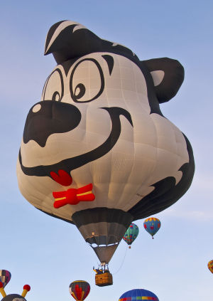 Balloon festival announces event details, first special shapes