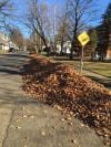 EDITORIAL: City should leave yard waste to homeowners
