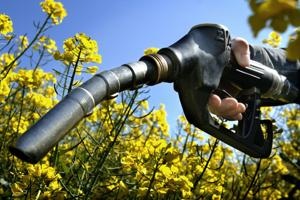 <p>The EU tried to pass a bill in 2007 that would cap biofuel to help protect food. </p>