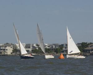 catboat race