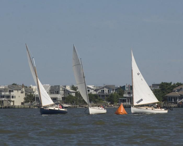 catboat race