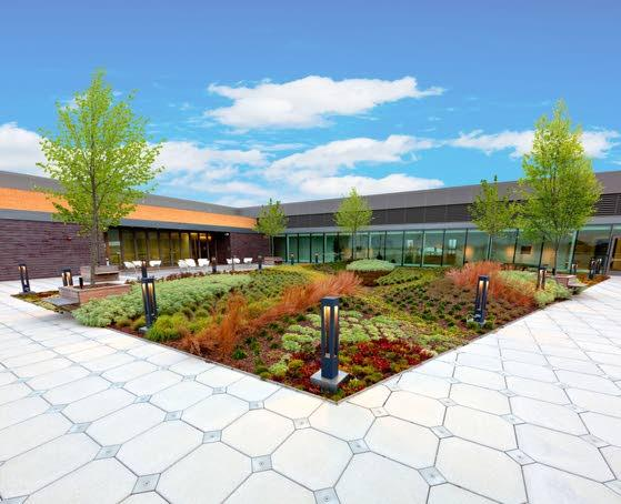 New roof tops Shore Medical Center green efforts