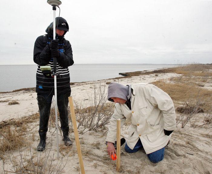 crab habitat restoration