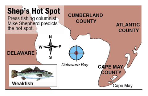 Hot Spot weakfish Miah Maull