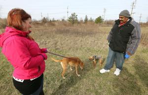 Ventnor dog park plans hit a 'ruff' patch