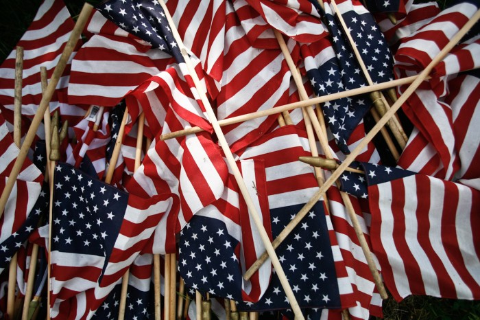 flagstrashed108727741.jpg