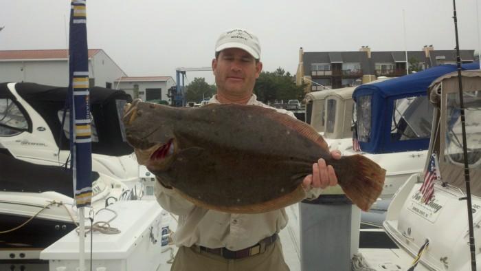 Daily shep on fishing report a brigantine fisherman 39 s for Brigantine fishing report