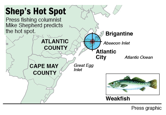 Hot Spot weakfish in Atlantic City