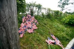 flagstrashed108727744.jpg