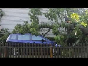 Storm Damage 1.mov