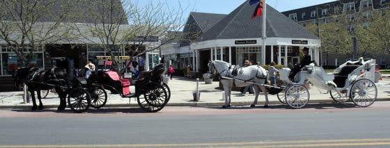 Driving horse-drawn carriage  not just a quiet, scenic walk