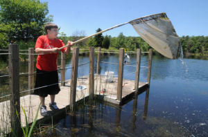 EGAP J12 CAP Nature Fest: David Brickley, 12, of Galloway Township, worked with a net to capture tadpoles in the pond during Galloway Township Middle School's Nature Fest in Mr. B's Backyard Classroom. Photo by Dave Griffin