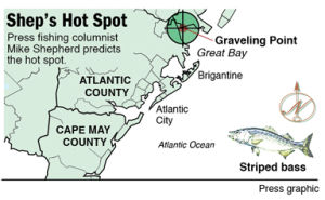 Hot Spot Graveling Point striped bass