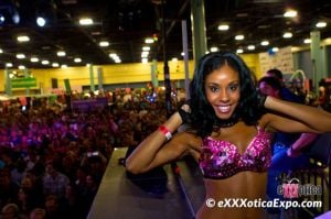 eXXXotica Weekend in A.C.Adult-film industry assembles at Taj Mahal