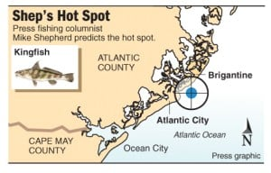 Hot Spot kingfish Brigantine
