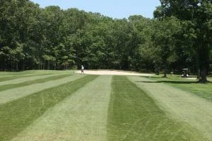 An Invitation to ScoreGreen Tree offers fun, unintimidating round of golf