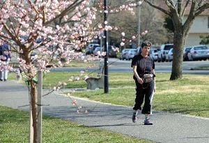 Warm Weather: Marge Lin, of Somers Point, walks along the bike path in Linwood on a warm Tuesday.  - Vernon Ogrodnek