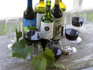Red hot wine blends  mix it up in summer