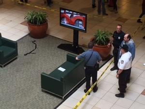 Hamilton Mall stabbing