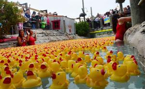 UNITED WAY DUCK REGATTA