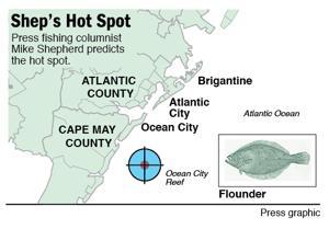 Hot Spot flounder on Ocean City Reef