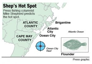 Hot Spot flounder on Ocean City Reef