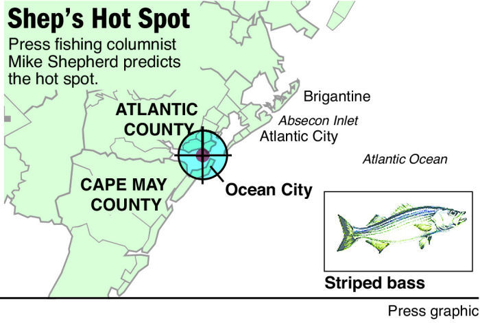 shep on fishing hot spot striper ocean city