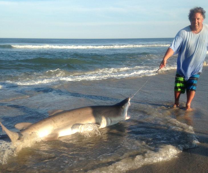 Somers point 39 s 39 shark tony 39 catches 8 foot shark off for Shark fishing nj