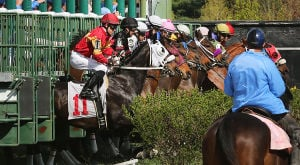 Day At The Races: Horses leave the gate for the second race of the day. Sunday April 27 2014 Live turf racing at the Atlantic City Racecourse in Mays Landing. (The Press of Atlantic City / Ben Fogletto) - Ben Fogletto