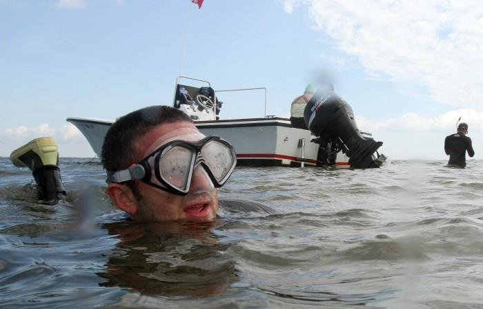 Diving for Sea Grass