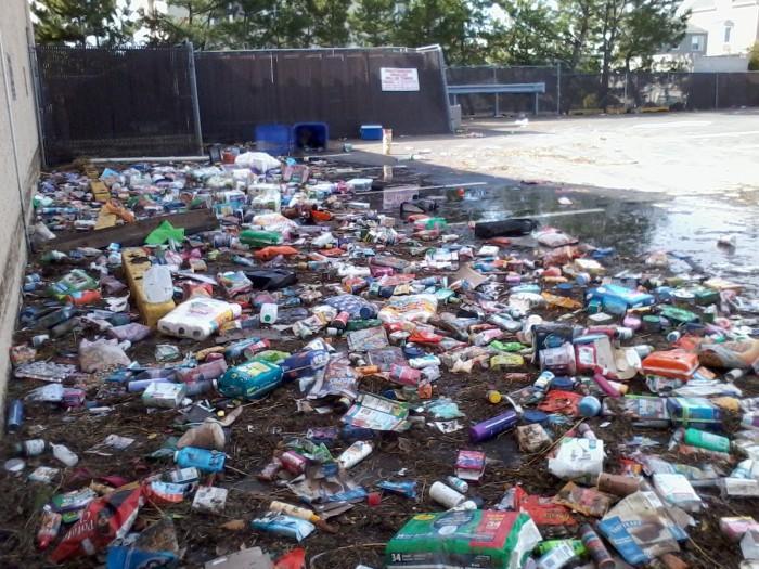 Lootig Sandy