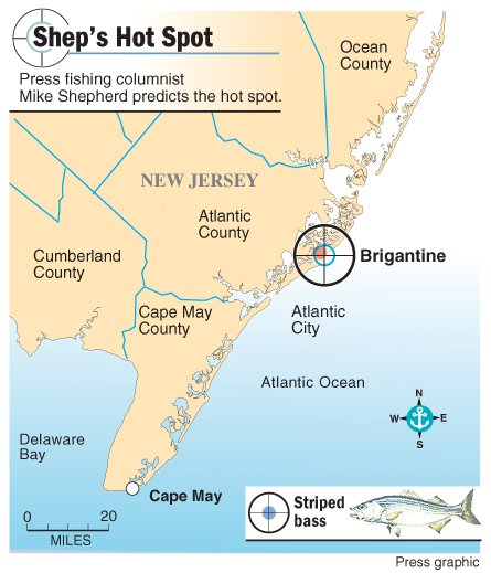 Shep on fishing fishing has been just like the weather for Brigantine fishing report
