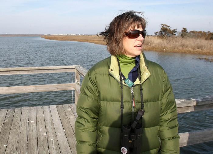 Wetlands92473513.jpg