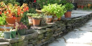 A stone wall can make your garden come to life