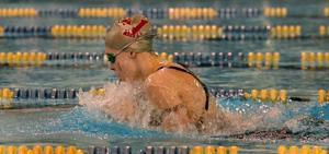 vineland girls swimming