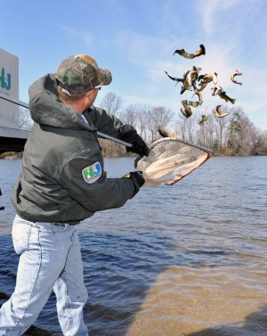 New jersey begins stocking state 39 s southern lakes streams for Lake elizabeth fishing